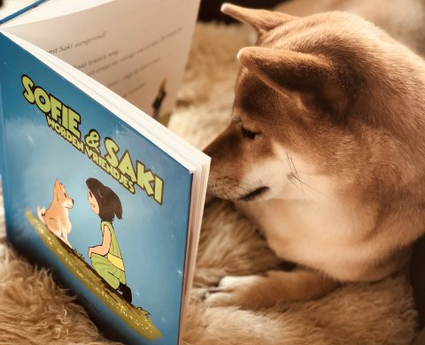 Kinderboek ontwikkeling